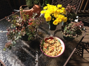 Mums, Sedum, and Hens-and-Chicks are not the traditional accompaniments to fried rice, but when the recipe itself is inauthentic, they do nicely.  At least to make the table festive.