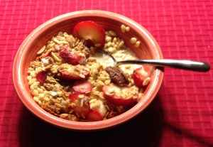 Okay, so I sliced a little fruit and sprinkled some homemade granola on top. It's still healthier than fries or chips.