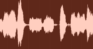 "This waveform is not of me saying, ""Damn! I burned the pizza!""--though that would have been clever."