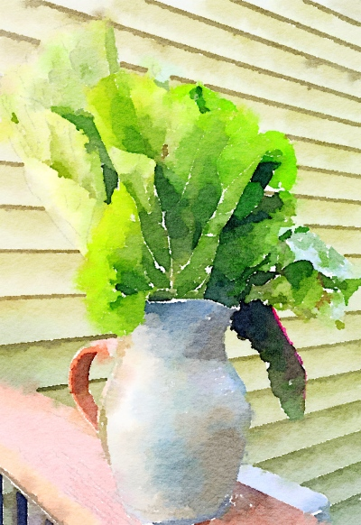 collards Waterlogue.png