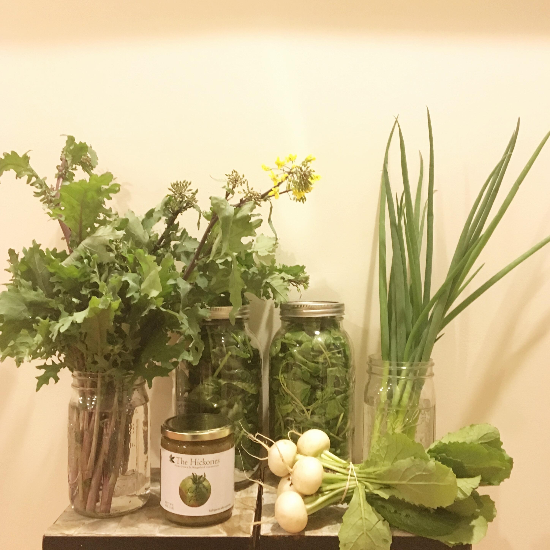 Week 1 Share: Kale Raab, Salsa Verde, Spinach, Hakurei Turnips, Arugula, Scallions